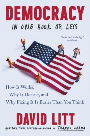 Book club book cover: Democracy in One Book or Less